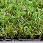 Close up of classic meadow grass