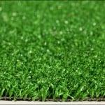 Close up of Amenity grass