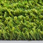 Close up of extreme lawn