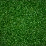 Wellness artificial grass