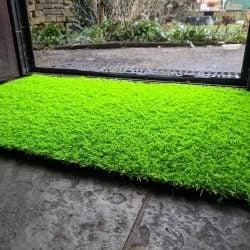 Solid Lime Doormat