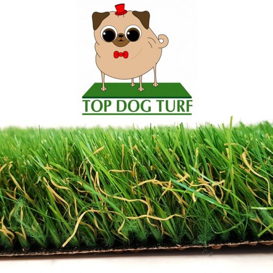 Champion Artificial Grass for Dogs